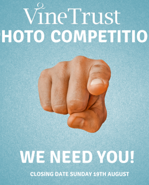 Photo Competition!